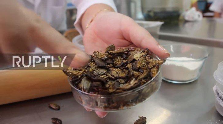 Επιστήμονες προτείνουν: Ψωμί κατσαρίδας που έχει γεύση ξηρών καρπών το οποίο μπορεί να σταματήσει την παγκόσμια πείνα