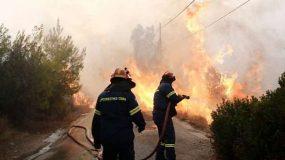 Πού και πώς μπορούμε να βοηθήσουμε τους πληγέντες απ' τις πυρκαγιές