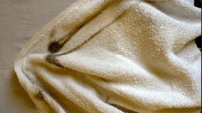 «Οι πετσέτες θαλάσσης μου μυρίζουν μούχλα. Τι μπορώ να κάνω για να ξεφορτωθώ τη μυρωδιά τους;»
