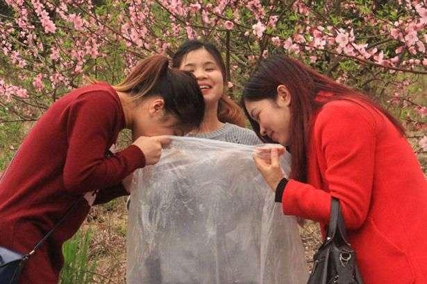 Κινέζοι πουλούν σακούλες με «καθαρό αέρα» του βουνού σε κατοίκους των αστικών κέντρων και σε άλλους επισκέπτες και θησαυρίζουν
