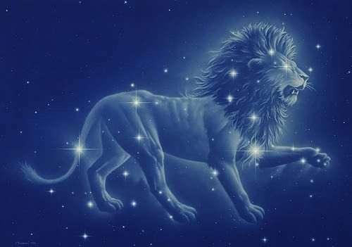 9+1 λόγοι για τους οποίους αγαπάμε ένα Λιοντάρι!