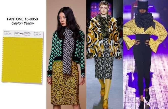 14+1 Top Χρώματα Μόδας Φθινόπωρο Χειμώνας 2018-2019