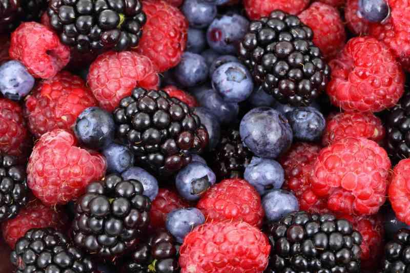 24+1 Τροφές – Λιποδιαλύτες, που Μπορείτε να Τρώτε Όσο Θέλετε και να Καίτε Λίπος