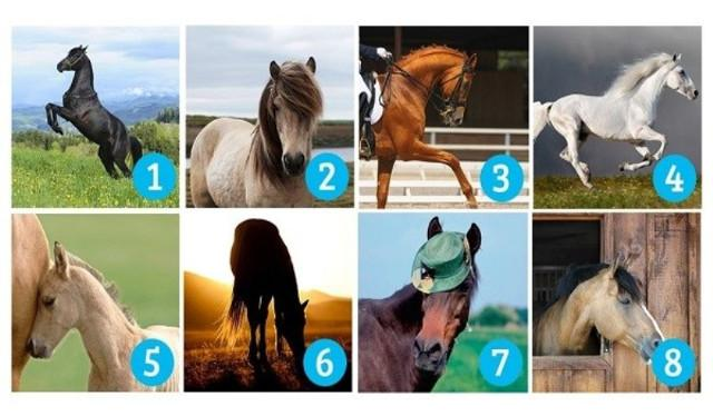 Πέφτει 100% μέσα!Ποιο άλογο σου τράβηξε πρώτο την προσοχή Δες τι αποκαλύπτει..!