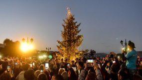 Αναψε το χριστουγεννιάτικο δέντρο στο πυρόπληκτο Μάτι [εικόνες]