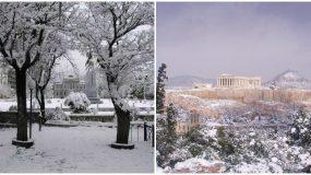 Καλλιάνος: «Χιόνια και στο κέντρο της Αθήνας από τη Δευτέρα»