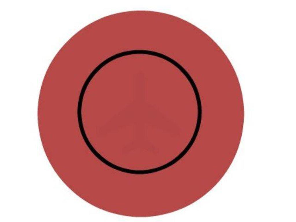 Είναι κρυμμένα αντικείμενα μέσα στους κύκλους.Μπορείς να τα δεις;