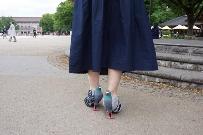 παπούτσια περιστέρια