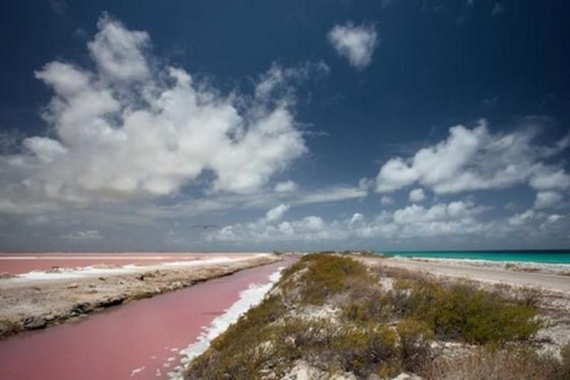 10 μοναδικές ροζ παραλίες που σε μαγεύουν-Δύο από αυτές βρίσκονται στην Ελλάδα