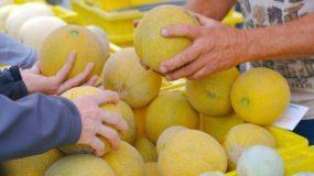 Λιστερίωση: Αυτά είναι τα συμπτώματα με τα οποία εκδηλώνεται και οι πιο «ύπουλες» τροφές