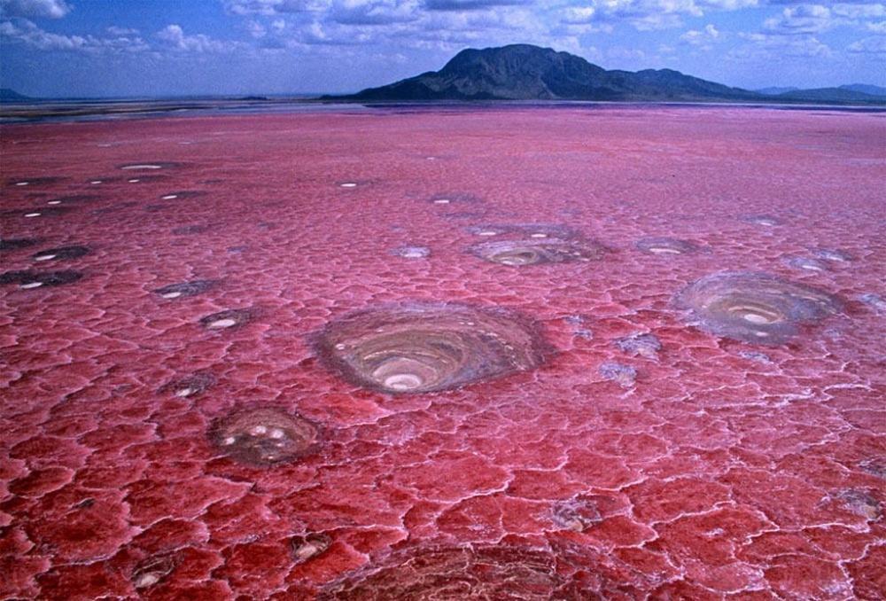 Η λίμνη Νάτρον της Τανζανίας