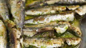 Kαλοκαιρίνο φαγάκι :Σαρδέλες ψητές στο φούρνο