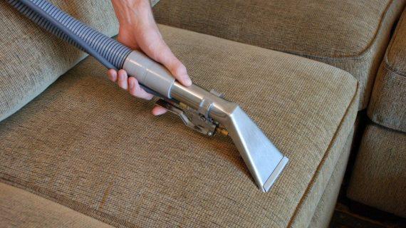 6 Εύκολοι Τρόποι να Καταπολεμήσεις τους Ψύλλους χωρίς Χημικά!