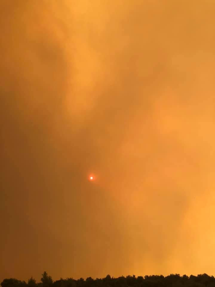 Μεγάλη φωτιά στην Εύβοια! Εικόνες από τη πυρκαγιά