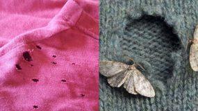 5 Λόγοι που δημιουργούνται οι τρύπες στα ρούχα και πως να τους αντιμετωπίσετε!
