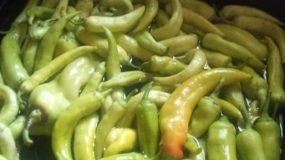 Σπιτικό τουρσί με πιπεριές!