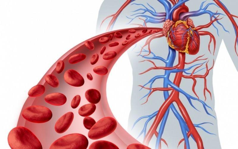 Αγγειίτιδα: Όσα πρέπει να γνωρίζουμε για τη νόσο-Ποια τα «αθώα» συμπτώματα και η θεραπεία της;