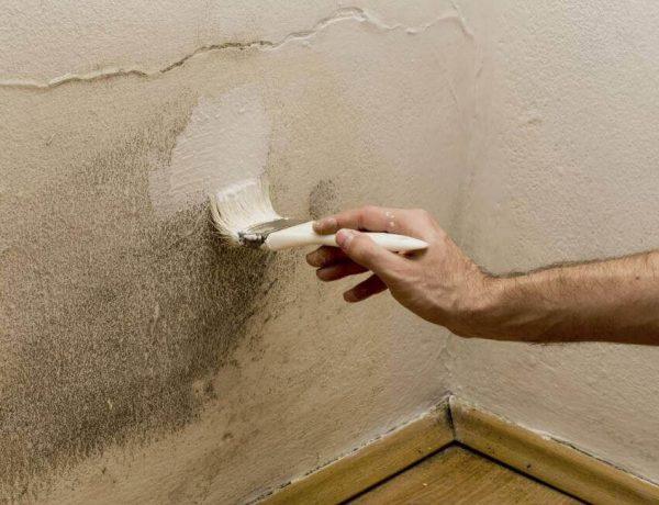 Έχετε υγρασία στο σπίτι; Εξαφανίστε την με τους παρακάτω τρόπους!