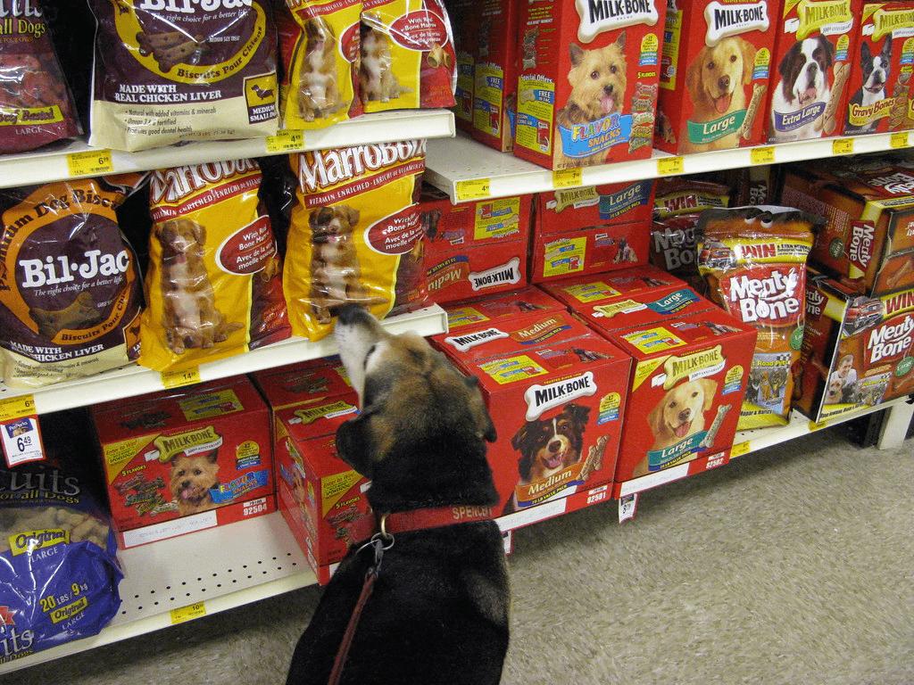 Τροφές σκύλου. Ποια είναι η κατάλληλη για τον δικό μου;