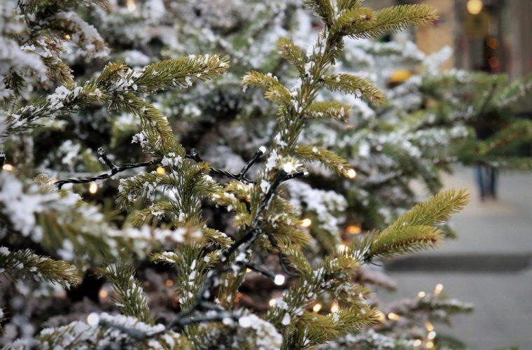 Καιρός: Ερχονται χιόνια τα Χριστούγεννα