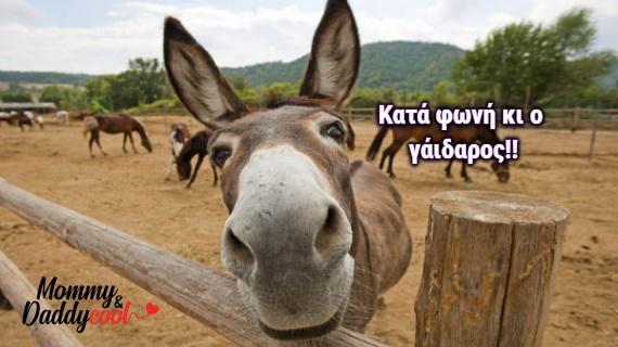 Μάθε πως βγήκαν 20 πασίγνωστες ελληνικές εκφράσεις που όλοι οι Έλληνες έχουμε πει