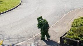 Ξεκαρδιστικό βίντεο: Ντύθηκε θάμνος για να βγει απ'το σπίτι εξαιτίας της καραντίνας!