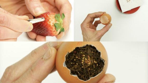 Καλλιέργησε φρούτα και λαχανικά στον κήπο σου με τον πιο εύκολο & οικονομικό τρόπο!