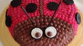 Τούρτα γενεθλίων πασχαλίτσα με γεύση σοκολάτα-φράουλα και μπισκότα oreo