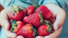 Φράουλες: Με αυτό το κόλπο θα διατηρηθούν φρέσκες για περισσότερες μέρες