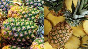 Ανανάς: Το φρούτο για την πίεση, τη δυσκοιλιότητα & την καύση λίπους - Δείτε όλα τα οφέλη