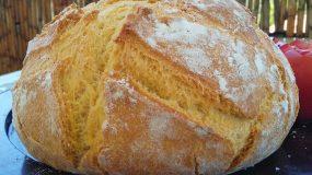 Το ψωμί της κατοχής: Παραδοσιακό καλαμποκόψωμο ή μπόμποτα ανεβατή στη γάστρα