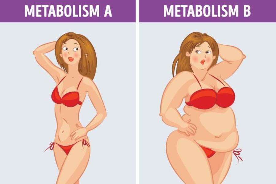 Τι είναι η μεταβολική δίαιτα & τι είναι αυτό που την κάνει να είναι τόσο αποτελεσματική