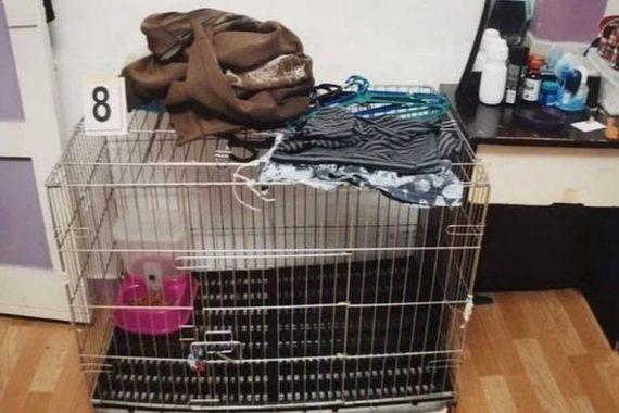 Γονείς έβρασαν το 5χρονο παιδί τους- Ζούσε μέσα σε κλουβί (φωτο)
