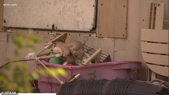 Βρέθηκε νεκρό βρέφος 7 ημερών σε κουβά με πίσσα- Το πέταξαν οι γονείς του