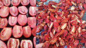 Πως να φτιάξετε μόνες σας σπιτικές λιαστές ντομάτες