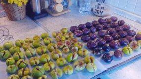 Συνταγή για παραδοσιακές Κερκυραϊκές Συκομαΐδες!