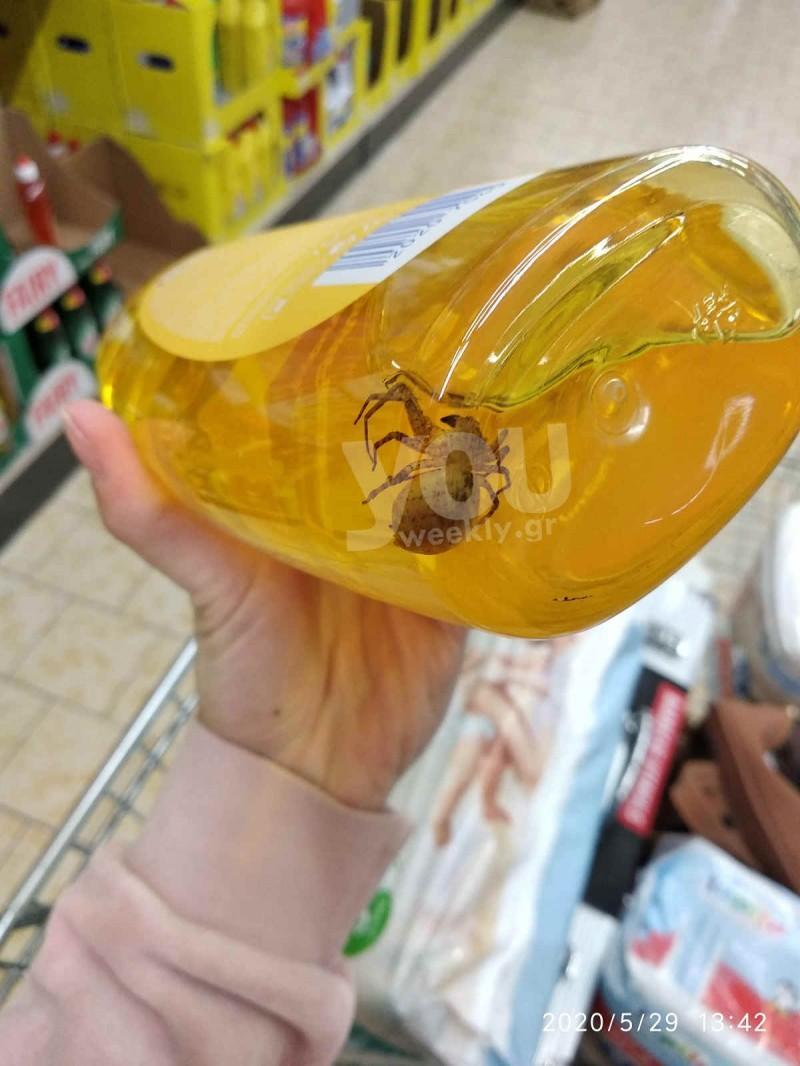 Σοκ: Αράχνη τέρας μέσα σε παιδικό σαμπουάν -Φώτο
