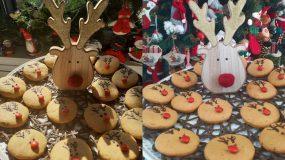 Χριστουγεννιάτικα μπισκότα με σχέδιο Ρούντολφ
