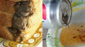 Αηδία: Δείτε τα 10 πιο αηδιαστικά πράγματα που βρέθηκαν μέσα σε φαγητό (βίντεο)