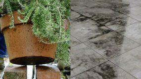 Καθαρισμός αυλής : Πλήρης οδηγός για να καθαρίσετε την αυλή