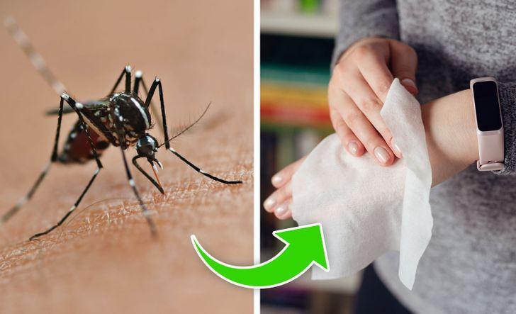 Scăpați de mușcăturile de insecte din lapte