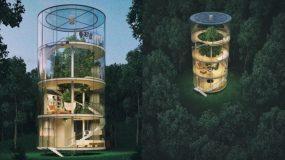 Το γυάλινο σπίτι που χτίστηκε γύρω από έναν κορμό δέντρου_