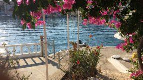 Εμβολιάστηκε το 100% των κατοίκων: Το πρώτο εληνικό νησί με covid free σφραγίδα που φέτος θα γίνει ο νο1 προορισμός