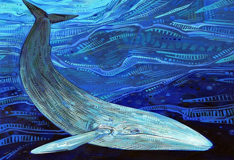 Κερατσίνι αυτοκτονία 15χρονου: Το παιχνίδι Μπλε Φάλαινα τον οδήγησε στον θάνατο