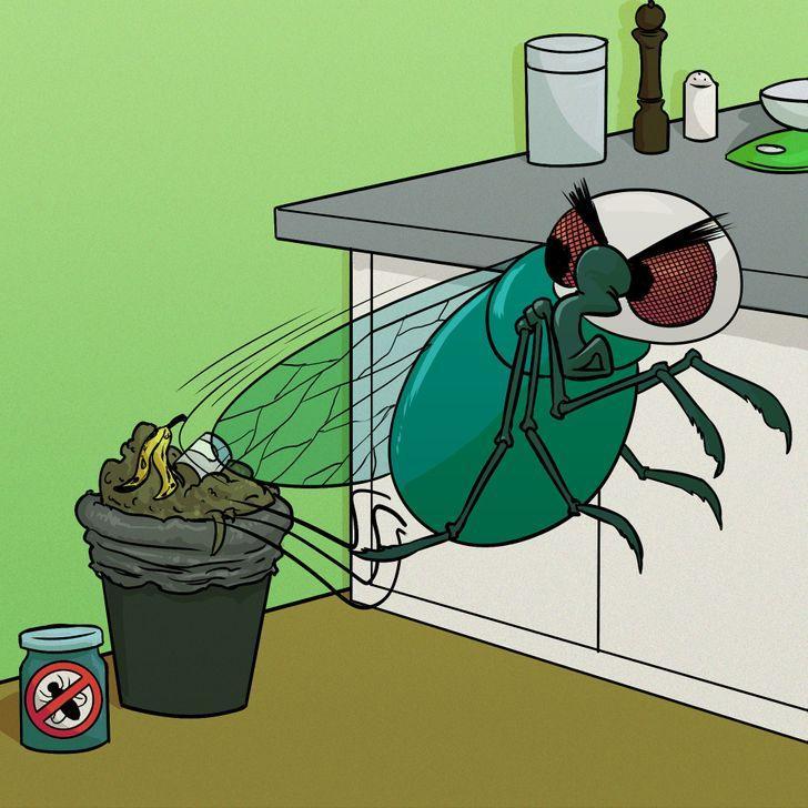 η_αίσθηση_της_γεύσης_δεν_παίζει_σημαντικό_ρόλο_στις_μύγες_