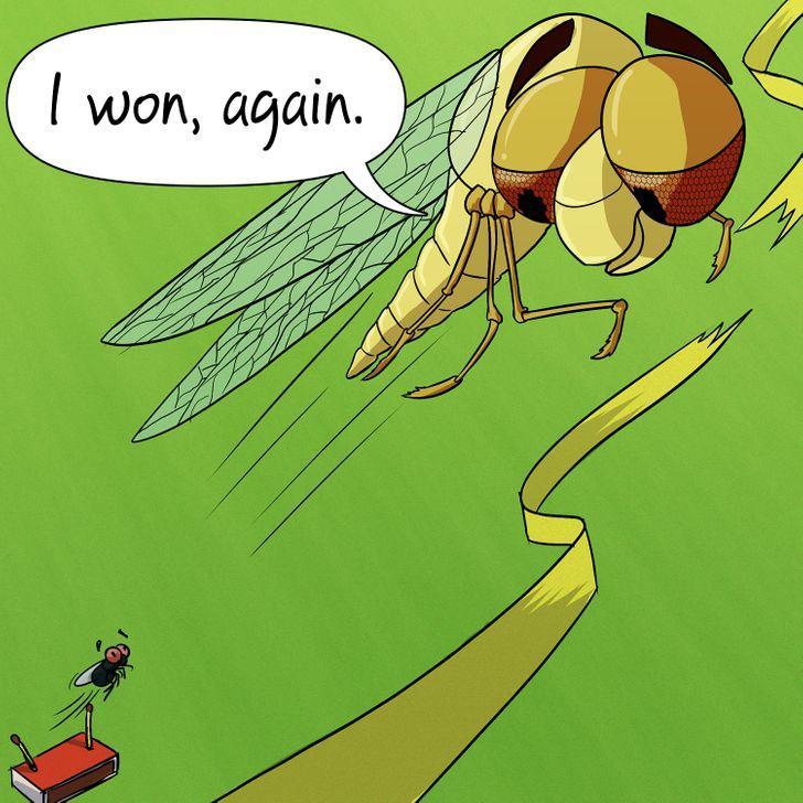 οι_μύγες_δεν_είναι_τόσο_γρήγορες_
