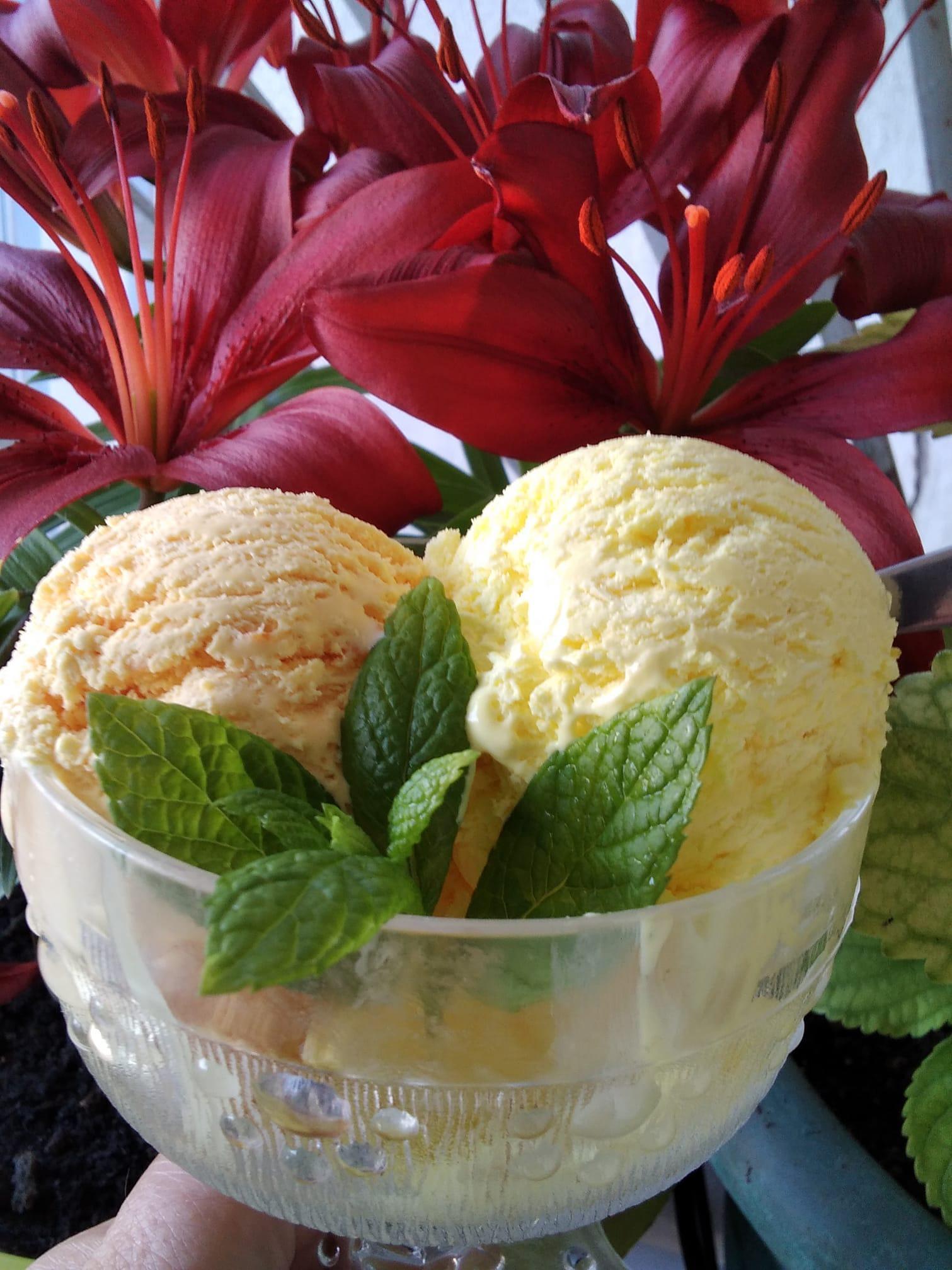 Παγωτό_πορτοκάλι_και_λεμόνι_