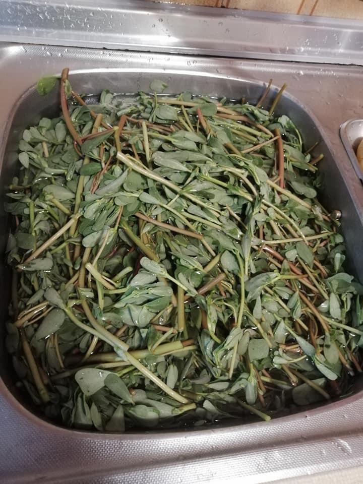 Γλιστρίδα- τουρσί-συνταγή-
