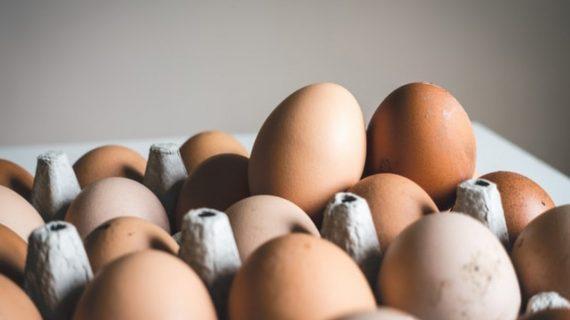 Ανακαλούνται χιλιάδες κοτόπουλα και βιολογικά αυγά