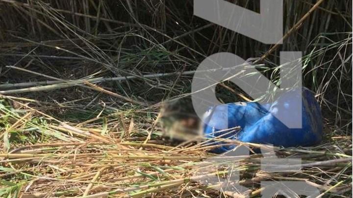 Φρίκη: Πτώμα βρέθηκε σε βαρέλι – Τι λέει ο αυτόπτης μάρτυρας
